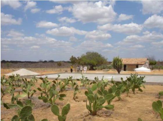 Brazil Rainwater Management